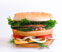 stockvault-hamburger136657